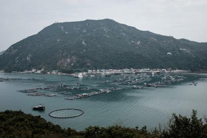 Hongkong-073