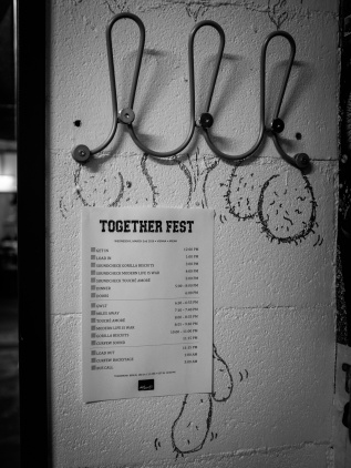 Togetherfest_06_Wien-011